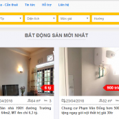 chia sẻ 2 themes website đăng tin bất động sản tốt nhất hiện nay