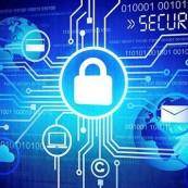 Website không ảnh hưởng bởi luật an ninh mạng có hiệu lực ngày 1/1/2019