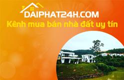 Thiết kế web daiphat24h.com